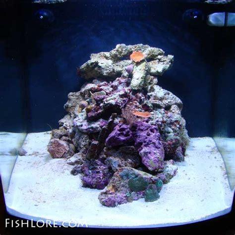 Live Rock Aquascape Saltwater Nano Cube Setup Nano Reef Tank Aquarium