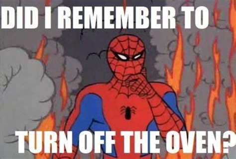Funny Spider Meme Pictures To - 78 best spiderman memes images on pinterest
