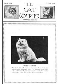 We Are The Cat Excerpt by The Way We Were Excerpts From The 1962 Cfa Yearbook Part 5