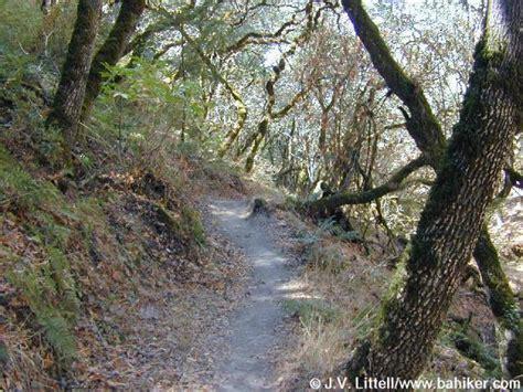 A Worn Path Story by A Worn Path Theme Essay A Worn Path Essay Critical