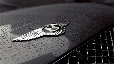 bentley logo black bentley logo wallpapers pictures images