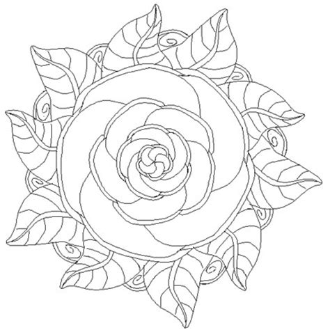 mandala coloring pages roses activities director a mandala to color and facts