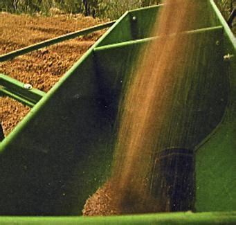 concimazione tappeto erboso realizzare manto erboso imprendo multiservizi