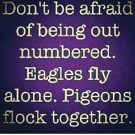 don t get high said the bird to the fly books don t be afraid you better say that