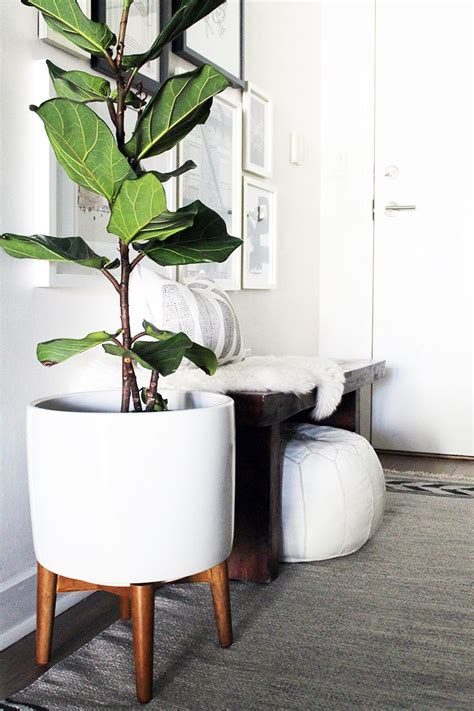 Floor And Decor Houston Locations 100 modern pots and planters novara square planter
