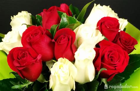 imagenes de rosas rojas imagenes de flores rojas y blancas para fondo de pantalla