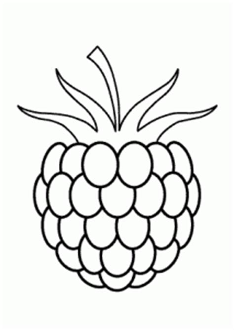 one raspberry fruits and berries coloring pages for kids