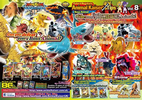 cards   animal kaiser official website