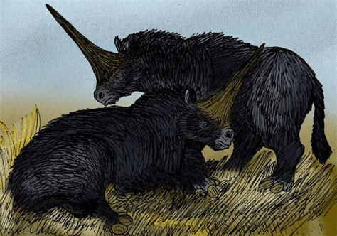 beberapa fakta mengejutkan tentang unicorn siberia mongabay co id
