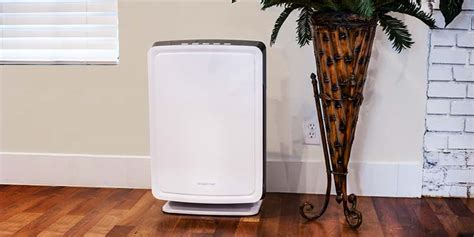 how to buy the best air purifier allergy air