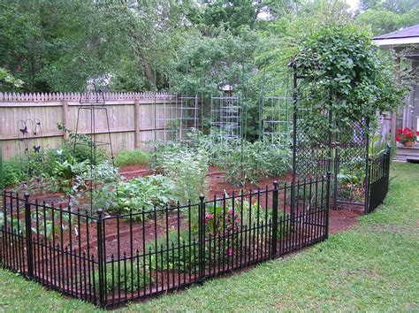 Garden Fence Ideas For Dogs Great Backyard Garden Ideal For My Dogs Or If You Animals Well Small Ones My Lab Can Jump