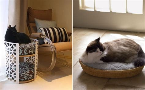 unique cat beds unique cat beds for pet lovers stylish eve