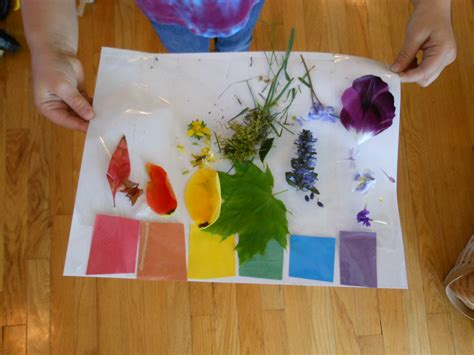 Kindergarten Activities Nature | image gallery nature themes for preschoolers