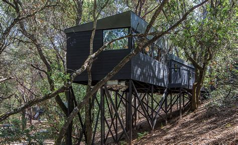 forest house by envelope a d 2017 06 01 architectural