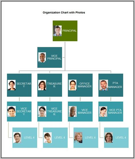 org chart freeware organizational chart template template resume