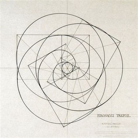 pattern form meaning 263 best images about all fibonacci spirale on pinterest