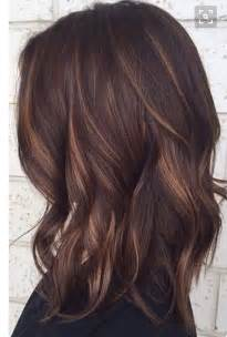 low light hair colors best 25 low lights hair ideas on pinterest blonde