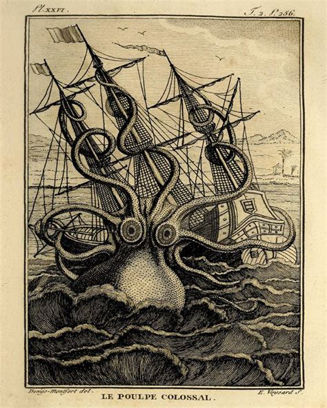 printable octopus art octopus art large art print old prints nautical art print