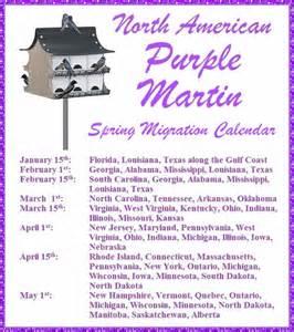 purple martin org scout report party invitations ideas