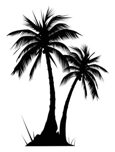 palm tree clipart tropical image wikiclipart
