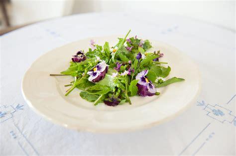 eetbaar onkruid in de tuin er groeit onkruid oogsten of bestrijden eetbaar