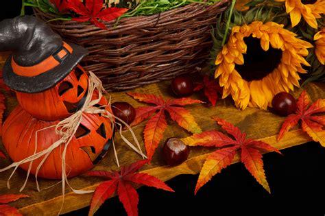halloween themed pictures halloween autumn theme free stock photo public domain