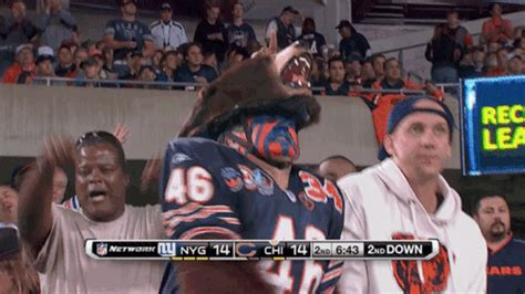 chicago bears fan site the regular nfl season is and it s just the worst