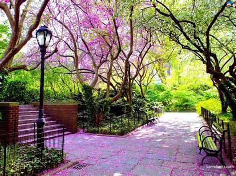 spring landscaping spring landscape wallpaper wallpapersafari