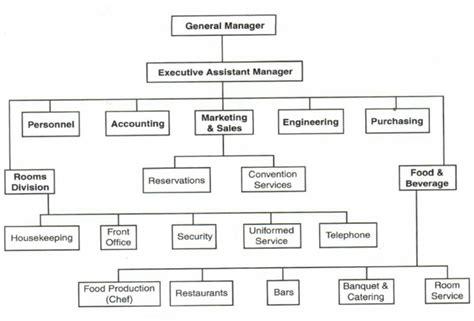 hotel organizational chart template sle hotel organization chart