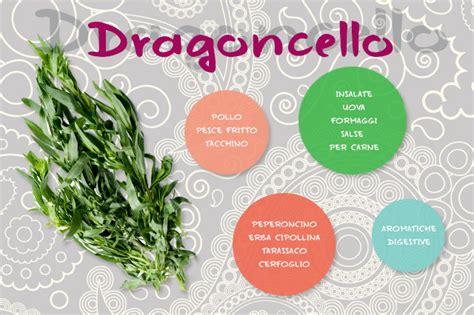 dragoncello in cucina come usare le erbe aromatiche in cucina dissapore