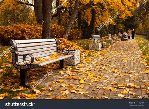 bench capital perspective row benches autumn park while stock photo