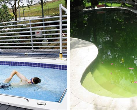 personal lap pool google offices vs your office
