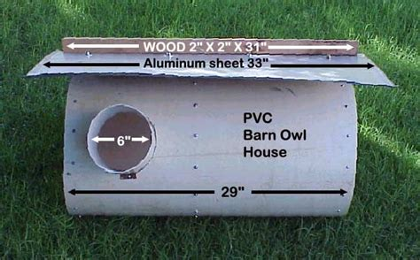 owl house plans free 1000 ideas about owl house on pinterest owl box