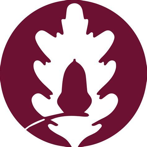 maroon logo headlice dalmain