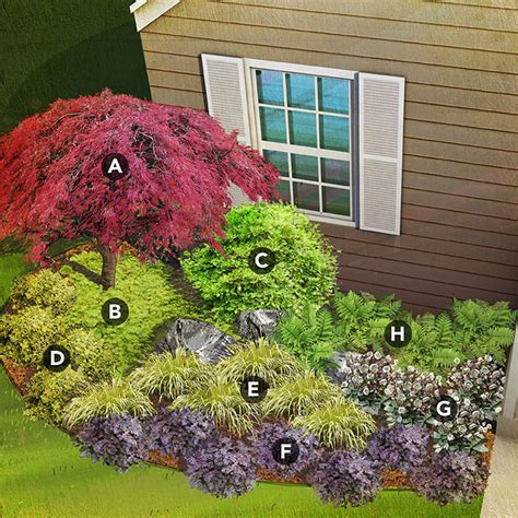 japanese maple shade shade garden plans by region