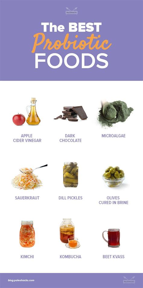 food with probiotics top 25 ideas about best probiotic on best probiotic supplement foods with