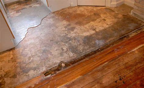 creaky floorboards creaky floorboards subsidence thefloors co