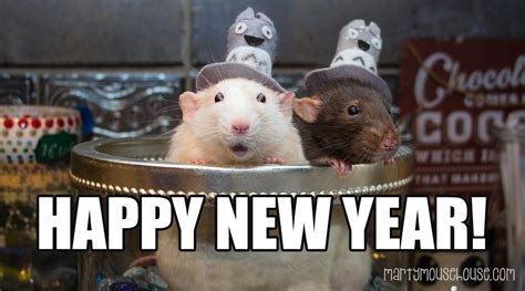 new year 2016 the rat happy new year marty mouse house