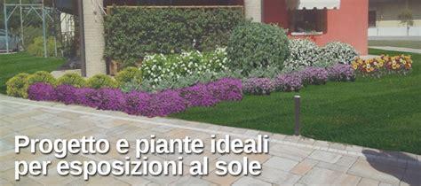 idee per un giardino fai da te idee giardino fai da te esposizione sole my green help