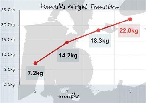 5 month golden retriever weight rokisuke s annex22 0kg 5 months golden retriever