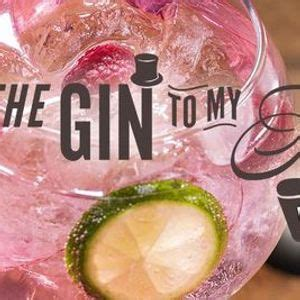 gin   tonic festival sheffield    oec