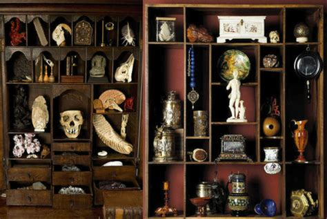 Cabinet Of Curiosities by The Cabinet Of Procurement Curiosities Procurious