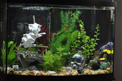 Aquarium Dekorieren Ideen deko f 252 r aquarium selber machen 30 kreative ideen