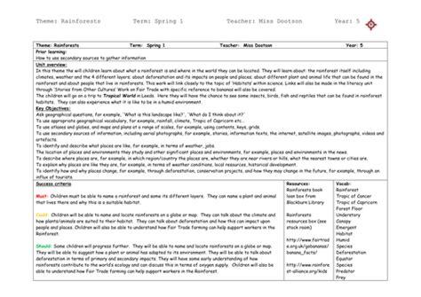 rainforest topic medium term planning by dootle