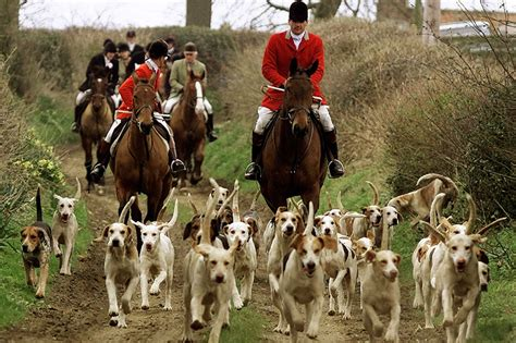 the hunts fox hunting conservative mp sir edward garnier wants
