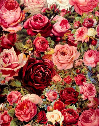 rose theme x2 fashion durable vinyl 1 5 w x2 2 h m thin photography