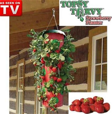 topsy turvy strawberry planter pots planters hang grow strawberry planter was sold for r41 00 on 24 oct at