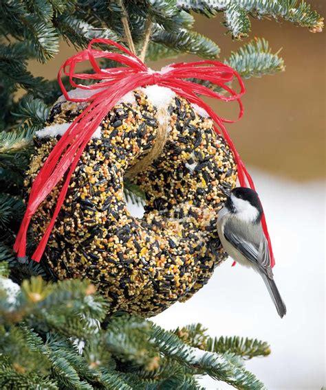 making a bird seed wreath birdcage design ideas