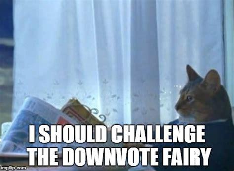 I Should Buy A Boat Meme Generator - i should buy a boat cat meme imgflip