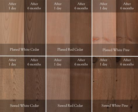 Stained Pine Deck by Lifetime Wood Treatment Lifetime Wood Treatment
